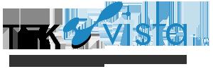 Tekvista logo